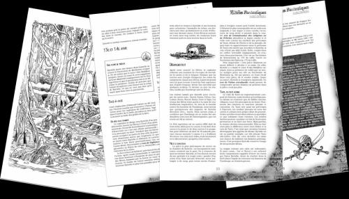 Défis Fantastiques, pirates, paragraphe 14, scriptarium